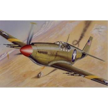 Модель самолета P-51 MUSTANG (1:72)