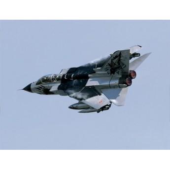 """Модель самолета Tornado IDS """"Black Panthers"""" (1:72)"""