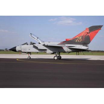 """ITALERI 1336 Сборная модель самолета TORNADO IDS/ECR """"Special colors"""" (1:72)"""