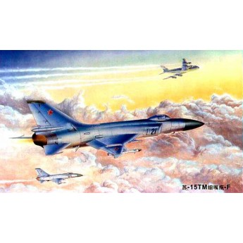 Модель самолета Су-15 ТМ (1:48)