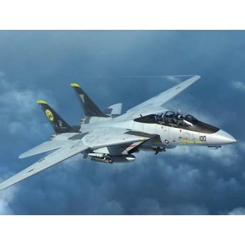 Модель самолета F-14D (1:144)